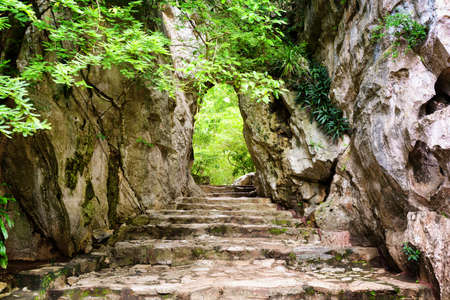 Scenic stone stairs leading up to gate in rocks among green foliage. Way to enigmatic tropical woods. Forest in summer season.