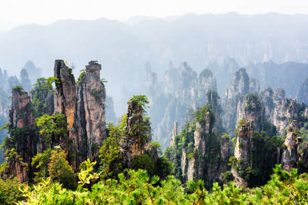 the natural world: Amazing view of natural quartz sandstone pillars of the Tianzi Mountains (Avatar Mountains) in the Zhangjiajie National Forest Park, Hunan Province, China. Scenic summer landscape with rock columns.