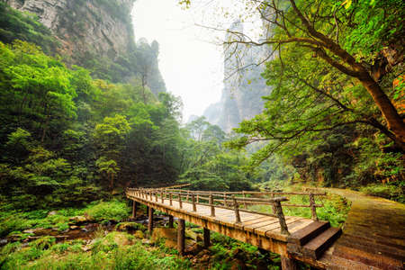 steep cliffs: Amazing view of wooden bridge over river with crystal clear water at bottom of deep mountain gorge among green woods and steep cliffs in the Zhangjiajie National Forest Park, Hunan Province, China.