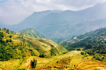 lien: Sunlit rice terraces at highlands of Sapa District, Lao Cai Province, Vietnam. The Hoang Lien Mountains in background. Sa Pa is a popular tourist destination of Asia. Stock Photo