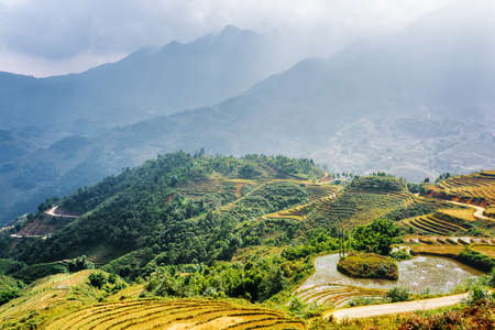 lien: Scenic view of rice terraces filled with water at highlands. Sapa District, Lao Cai Province, Vietnam. The Hoang Lien Mountains in background. Sa Pa is a popular tourist destination of Asia.