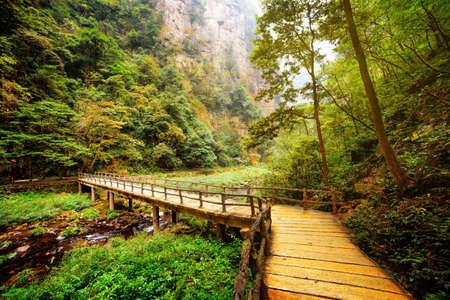 Gele houten brug over de rivier berg met kristalhelder water tussen groene bossen en rotsen in het Zhangjiajie National Forest Park, de provincie Hunan, China. Mooie zomer landschap.