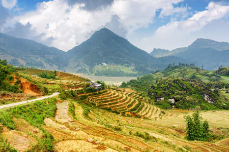 lien: Terraced rice fields among the Hoang Lien Mountains of Sapa District, Lao Cai Province, Vietnam. Sa Pa is a popular tourist destination of Asia.