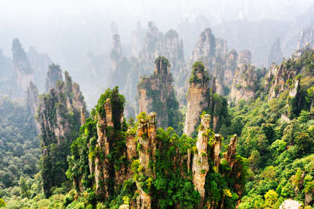 Top view of amazing natural quartz sandstone pillars of fantastic shapes among green woods in the Tianzi Mountains (Avatar Mountains), the Zhangjiajie National Forest Park, Hunan Province, China.