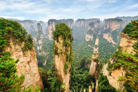 天然石英砂岩の美しい景色は、緑の森と中国湖南省張り家界国家森林公園、天池山の岩の間でアバター ハレルヤ山柱します。