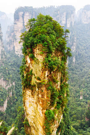 magnificence: Scenic natural quartz sandstone pillar the Avatar Hallelujah Mountain among green woods and rocks in the Tianzi Mountains, the Zhangjiajie National Forest Park, Hunan Province, China.