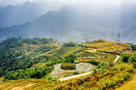 lien: Scenic view of rice terraces filled with water at highlands of Sapa District, Lao Cai Province, Vietnam. The Hoang Lien Mountains in background. Sa Pa is a popular tourist destination of Asia.