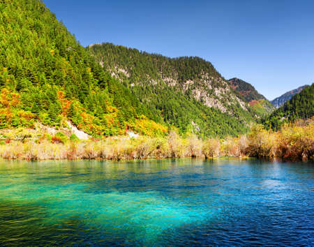 water fall: Amazing view of lake with azure water among colorful fall woods and scenic mountains in the Shuzheng Valley, Jiuzhaigou nature reserve (Jiuzhai Valley National Park), China. Sunny autumn landscape. Stock Photo