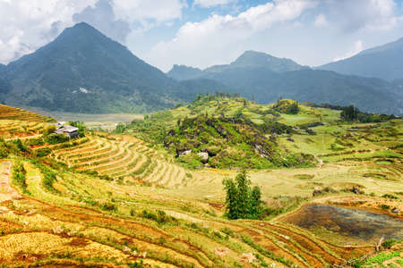 destination scenic: Scenic view of terraced rice fields among the Hoang Lien Mountains of Sapa District, Lao Cai Province, Vietnam. Sa Pa is a popular tourist destination of Asia.