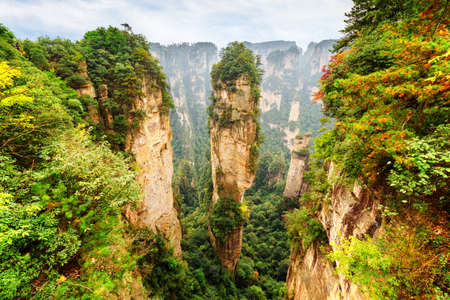 hallelujah: Amazing view of natural quartz sandstone pillar the Avatar Hallelujah Mountain among green woods and rocks in the Tianzi Mountains, the Zhangjiajie National Forest Park, Hunan Province, China. Stock Photo