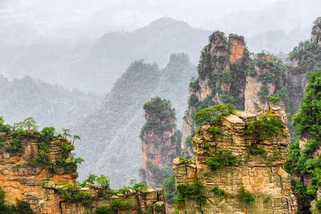 天池山 (アバター山)、張り家界国家森林公園、中国で自然の万里の長城の名前岩の狭い自然壁のすばらしい眺め。背景の樹木が茂った山。