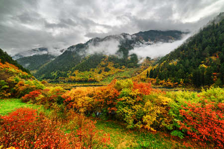 fantastic view: Fantastic view of mountains in fog, evergreen woods and colorful fall forest in Jiuzhaigou nature reserve (Jiuzhai Valley National Park) of Sichuan province, China. Amazing autumn landscape.