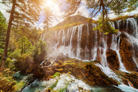 lang: Amazing view of the Nuo Ri Lang Waterfall (Nuorilang) among colorful fall woods in Jiuzhaigou nature reserve (Jiuzhai Valley National Park), China. The sun is shining through foliage of trees.