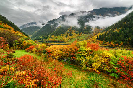 rural landscape: Fantastic view of mountains in fog, evergreen woods and colorful fall forest in Jiuzhaigou nature reserve (Jiuzhai Valley National Park) of Sichuan province, China. Beautiful autumn landscape. Stock Photo