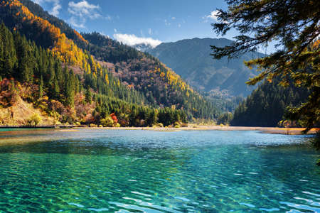 autumn landscape: Amazing view of the Arrow Bamboo Lake with azure crystal clear water among mountains and colorful fall woods, Jiuzhaigou nature reserve (Jiuzhai Valley National Park), China. Scenic autumn landscape.