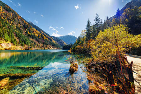 clear water: Beautiful view of the Arrow Bamboo Lake with crystal clear water among mountains and colorful fall woods, Jiuzhaigou nature reserve (Jiuzhai Valley National Park), China. Scenic sunny autumn landscape