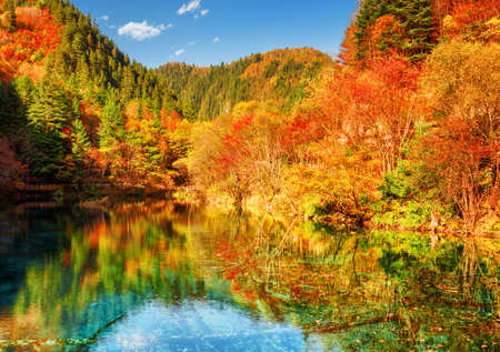 fantastic view: Fantastic view of the Five Flower Lake (Multicolored Lake) among colorful fall woods in Jiuzhaigou nature reserve (Jiuzhai Valley National Park), China. Autumn forest reflected in crystal clear water. Stock Photo