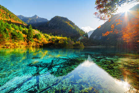 submerged: Amazing view of the Five Flower Lake (Multicolored Lake) among fall woods and mountains in Jiuzhaigou nature reserve, China. Submerged tree trunks at the bottom. The sun is shining through foliage. Stock Photo