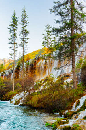 evergreen trees: Amazing view of the Pearl Shoals Waterfall with crystal clear water among evergreen trees and wooded mountains in Jiuzhaigou nature reserve (Jiuzhai Valley National Park), China. Autumn landscape. Stock Photo