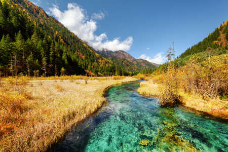 Scenic view of amazing green river with crystal clear water among fall fields and wooded mountains at the Rize Valley, Jiuzhaigou nature reserve (Jiuzhai Valley National Park), China. Autumn landscape