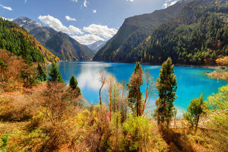 long lake: Fantastic view of the Long Lake with azure water among mountains and fall woods in Jiuzhaigou nature reserve (Jiuzhai Valley National Park), China. Beautiful snowy peaks are visible in background.