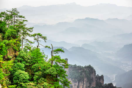 Wonderful view of green trees growing on top of rock in the Tianzi Mountains (Avatar Rocks), the Zhangjiajie National Forest Park, Hunan Province, China. Wooded mountains are visible in background.