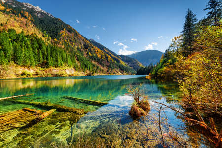 Beautiful view of the Arrow Bamboo Lake with crystal clear water among mountains and colorful fall woods in Jiuzhaigou nature reserve (Jiuzhai Valley National Park), China. Sunny autumn landscape. Stock Photo