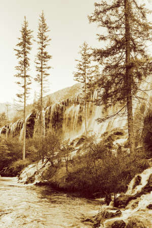 evergreen trees: Amazing view of the Pearl Shoals Waterfall with crystal clear water among evergreen trees and scenic wooded mountains in Jiuzhaigou nature reserve (Jiuzhai Valley National Park), China. Sepia toning.