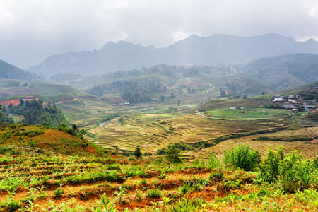 lien: Top view of rice terraces at highlands of Sapa District, Lao Cai Province, Vietnam. Sa Pa is a popular tourist destination of Asia. The Hoang Lien Mountains are visible in background