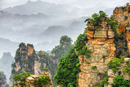 fantastic view: Fantastic view of green trees growing on steep cliffs in the Tianzi Mountains (Avatar Mountains), the Zhangjiajie National Forest Park, Hunan Province, China. Beautiful mountain landscape.