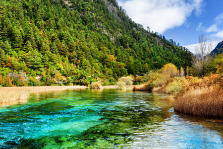 crystal clear: Amazing azure river with crystal clear water among mountains and evergreen woods in Jiuzhaigou nature reserve (Jiuzhai Valley National Park) of Sichuan province, China. Beautiful landscape.