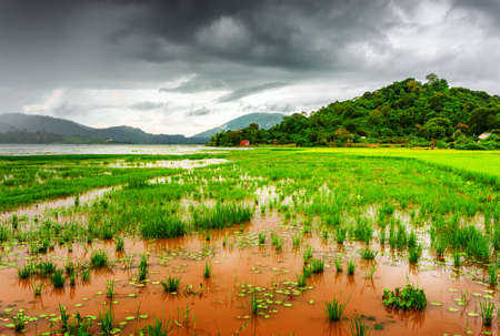 The Lak Lake and bright green rice field, the Tay Nguyen (the Central Highlands), Dak Lak Province (Daklak), Vietnam. Dramatic stormy sky in background. The Lak Lake is a popular tourist destination. Stock Photo