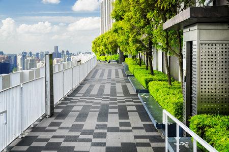Hermoso Jardín En La Azotea Terraza Exterior Con Parque Paisajístico Y Vistas Increíbles De La Ciudad Bancos Modernos Debajo De árboles Verdes A Lo