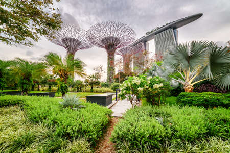 Singapore - February 18, 2017: Scenic view of Gardens by the Bay with the Supertree Grove. The Marina Bay Sands Hotel is visible in background. Singapore is a popular tourist destination of Asia.