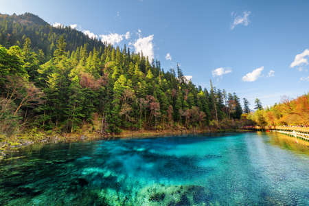 Niesamowity widok na Five Coloured Pool (Kolorowy Staw) z lazurową, krystalicznie czystą wodą wśród jesiennych lasów i zalesionych gór w rezerwacie przyrody Jiuzhaigou (Park Narodowy Jiuzhai Valley), Chiny.