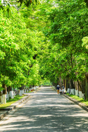 Amazing green shady road on summer sunny day at the Imperial City in Hue, Vietnam. Hue is a popular tourist destination of Asia.