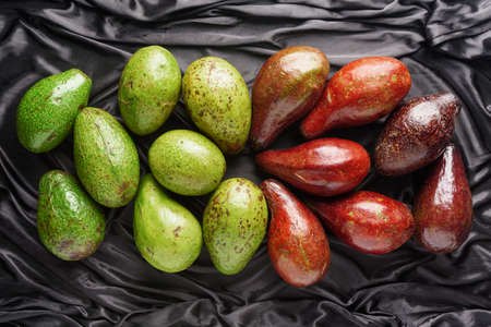 Colorful fresh ripe avocados on dark background. Green and red fruit varieties. Different colors and cultivars of avocado. Healthy eco food. Product of organic farming.
