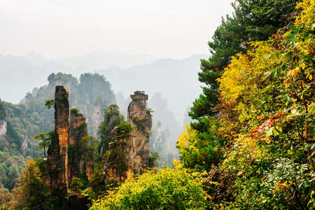 Amazing view of fantastic natural quartz sandstone pillars among colorful fall woods and rocks in the Tianzi Mountains (Avatar Mountains), the Zhangjiajie National Forest Park, Hunan Province, China. Zdjęcie Seryjne - 125873236