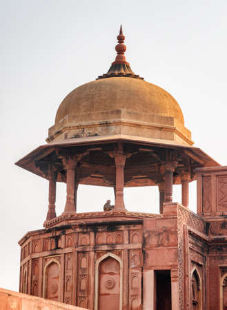 Awesome view of red sandstone octagonal tower with dome in the Agra Fort, India. Monkey is visible in the tower. Amazing Mughal architecture. The fort is a popular tourist attraction of South Asia.