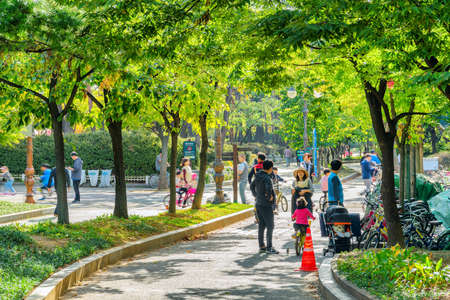 Seoul, South Korea - October 14, 2017: Children bicycling among trees. Korean families resting and walking along scenic green park. The park is a popular recreational gathering place among residents. Stock Photo