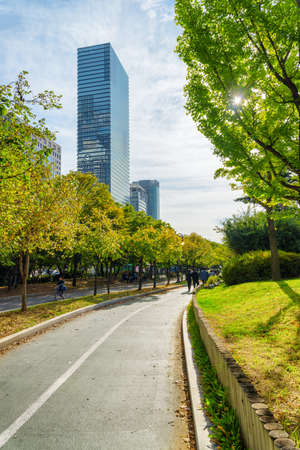 Awesome autumn view of scenic boulevard in Yeouido Park of Seoul, South Korea. Amazing fall cityscape. Yeoui Island is the main finance and investment banking district of Seoul.