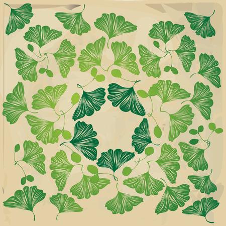 gingko: biloba leaves and seeds pattern