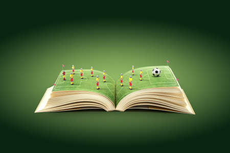 soccer field: Open book with green grass soccer stadium
