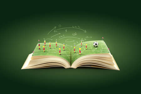 soccer stadium: Open book with green grass soccer stadium