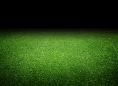 lawn grass: illuminated soccer field Stock Photo