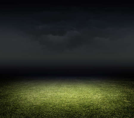 sport: Stadium grass Stock Photo