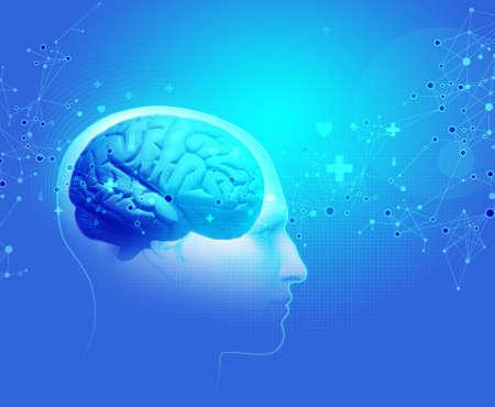 x ray image: The Human Body - Brain Stock Photo