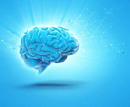 brain: brain