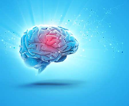 brain Stock fotó