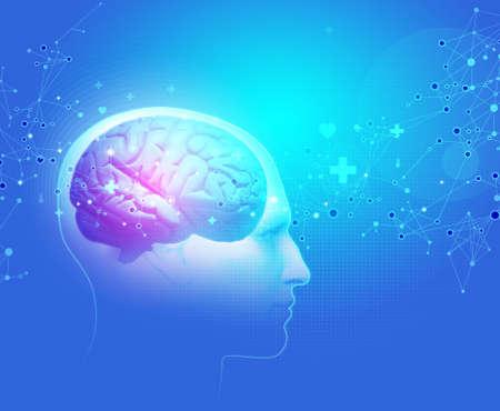 hypothalamus: The Human Body - Brain Stock Photo